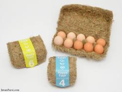 طرح توجیهی بسته بندی و توزیع مواد غذایی (تخم مرغ)
